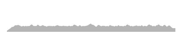 Bali Wedding Videography logo